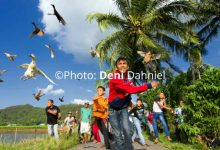 Photo of Pacu Itiak: Olahraga Tradisional yang Unik dari Minangkabau