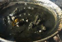 Photo of Gulai Ayam Itam Galundi Makanan Khas Nagari Sulit Air, Sumatera Barat